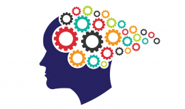 BDPD Bilişsel Davranışçı Terapi Temel Eğitimi Programı (2019) KONTENJANIMIZ DOLMUŞTUR.
